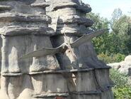 Calgary Zoo pteranodon