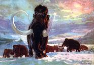 Mammoth by zdenek burian