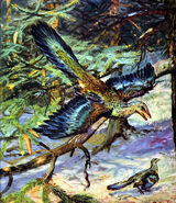 Archaeopteryx lithographica by zdenek burian 1960