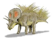 Triceratops new BW