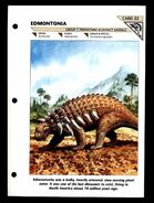 Wildlife fact file Edmontonia front