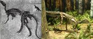 Camptosaurus both