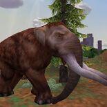 American Mastodon-0