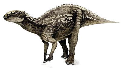 Fukuisaurus.jpg
