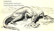 Oviraptor Discovering Dinosaurs