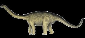 Rhoetosaurus.png