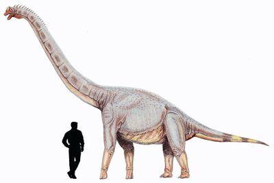 Sonorasaurus.jpg