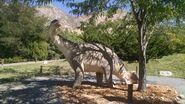 George s eccles dinosaur park camarasaurus by dinolover09 dcoo4in-fullview
