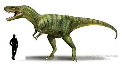 Albertosaurus.jpg