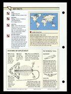 Wildlife fact file Diplocaulus back