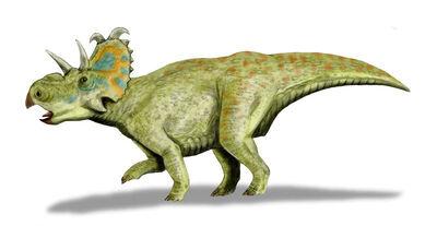 Albertaceratops.jpg
