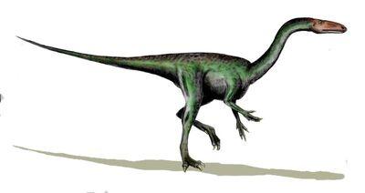 Segisaurus.jpg