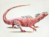 Acleistorhinus