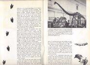 RARE Vintage 1957 World Dinosaurs Smithsonian Book Paleontology Natural History 4