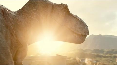 About the Tyrannosaurus Rex