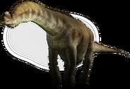 Dino-large large large