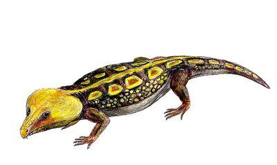 Labidosaurus.jpg