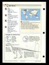Wildlife fact file Deinonychus back