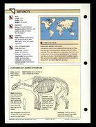 Wildlife fact file Indricotherium back