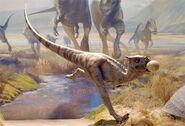 Dracorex JWFK
