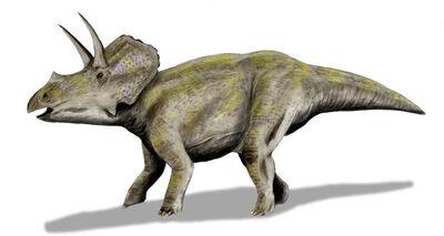 Eotriceratops.jpg