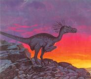 Velociraptor An Alphabet of Dinosaurs