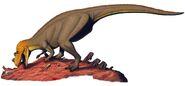 CQ ceratosaurus