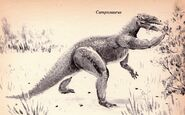 Camptosaurus Dinosaurs and Other Prehistoric Animals