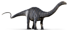 JW Apatosaurus.png