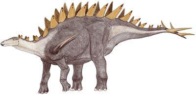 Tuojiangosaurus.jpg