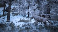800px-Dire wolf