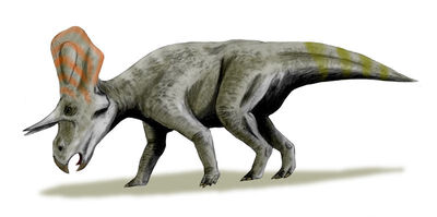 Zuniceratops.jpg