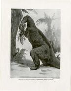 Iguanadon Dinosaur Print Antique Lithographs C.1900