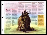 Wildlife fact file Stegosaurus inside