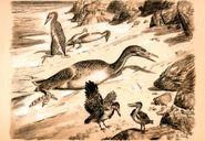 Hesperornis & ichthyornis by zdenek burian 1953