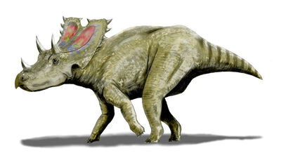 Agujaceratops.jpg