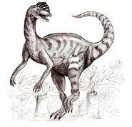 Sketch dilophosaurus