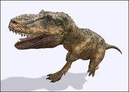 Daspletosaurus DP