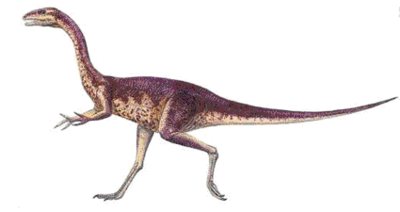 Elaphrosaurus.png