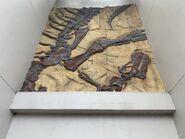 Isla Nublar Tour Camarasaurus Fossil