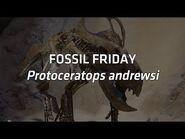 Protoceratops andrewsi - Fossil Friday