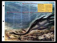 Wildlife fact file Plesiosaurus inside
