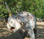 Centrosaurus model