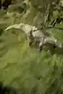 Super Chris Callum Disney Dinosaur 2000