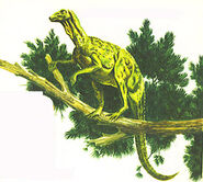 Hypsilophodon tree