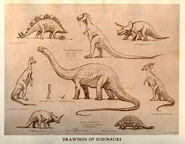 Knight-dinosaur-drawings-1000x779