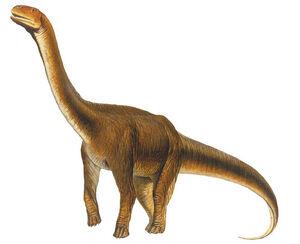 Malawisaurus2.jpg
