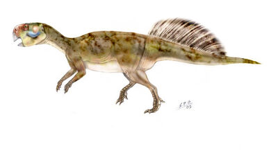Psittacosaurus.jpg