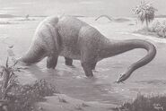 Diplodocus Neave Parker'