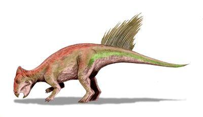 Liaoceratops.jpg